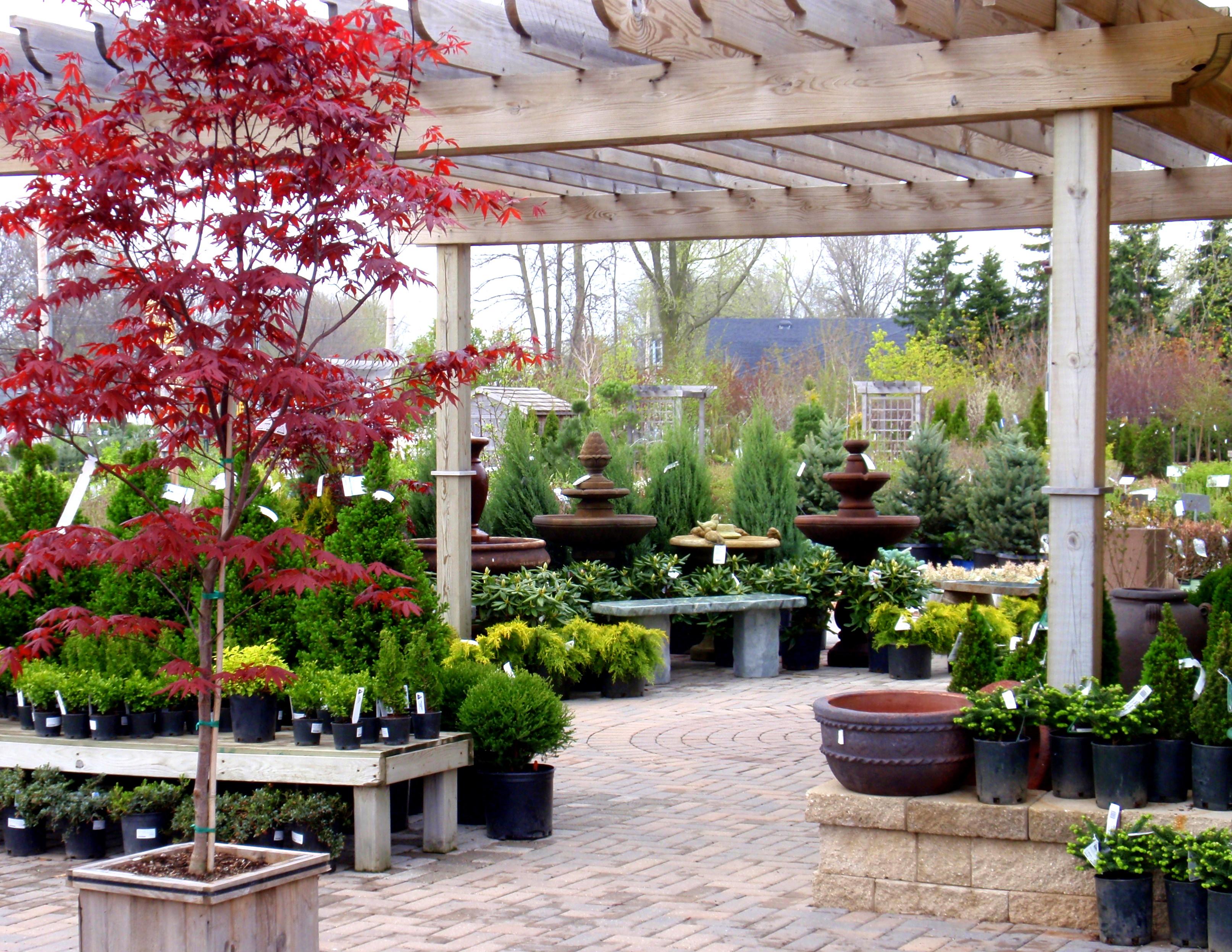 Garden Centre: Garden Center